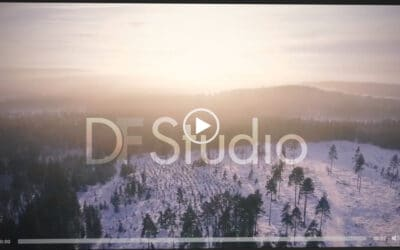 DF Studio Update: Watermark Video Previews
